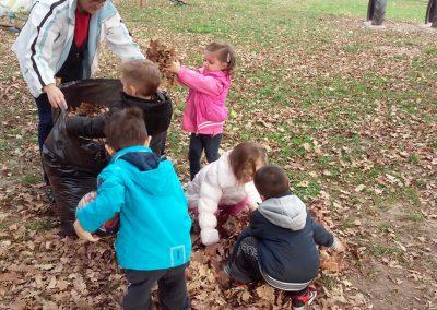 8.uredjenje dvorišta sakupljamo lišće Medium